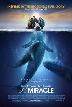 BIG-MIRACLE-ปาฏิหาริย์วาฬสีเทา-(2012)