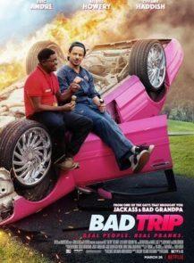 Bad-Trip-ทริปป่วนคู่อำ-(2021)