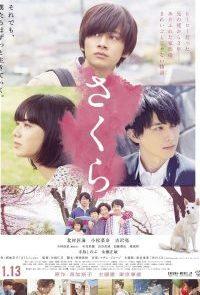 Sakura-(2020)-[ซับไทย]